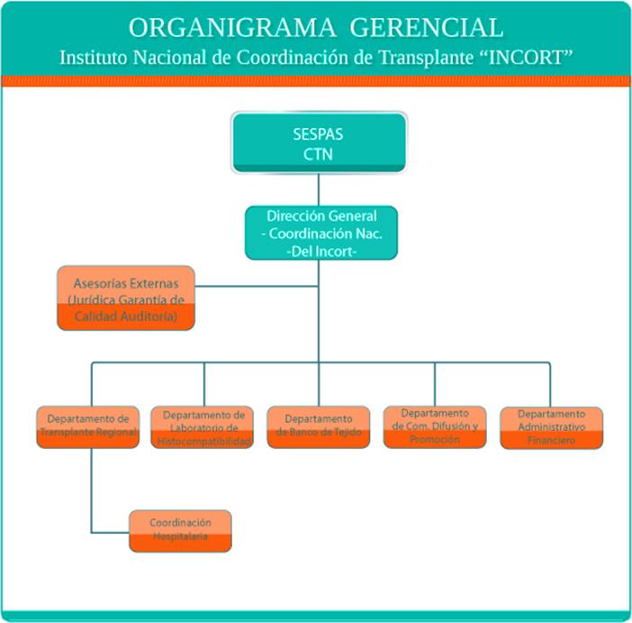 Organigrama_Gerencial1
