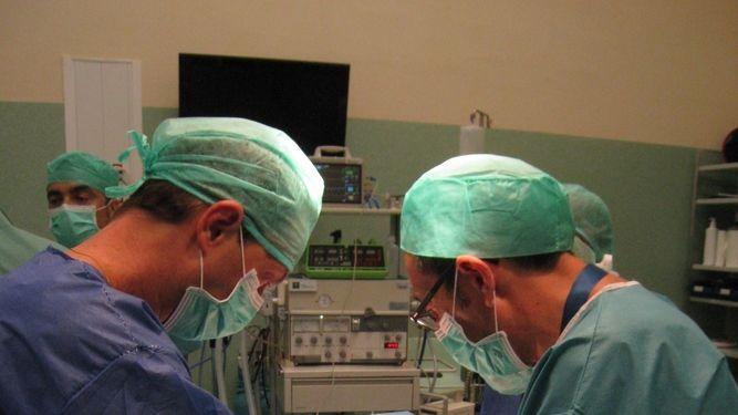 Salud promueve el desarrollo de programas de donación en asistolia a través de la formación de sus profesionales