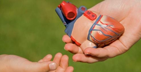 Donar órganos es ayudar a vivir