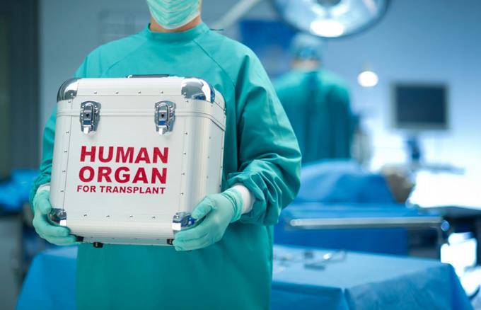 Exponen pasos para donación de órganos