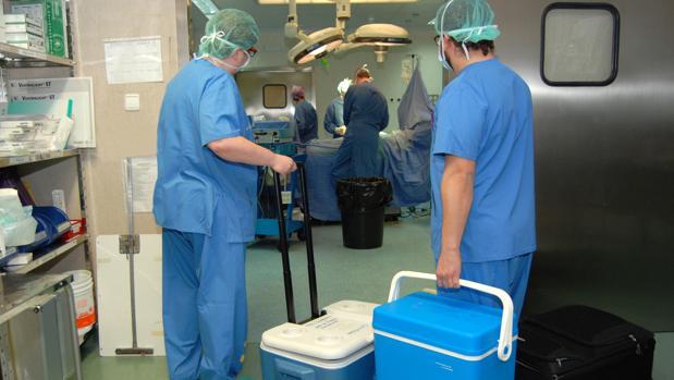 La carrera contrarreloj del trasplante de órganos