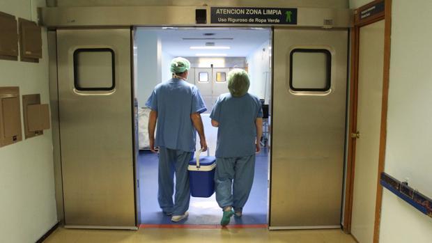 Sanidad eliminará trabas laborales para los donantes vivos de órganos