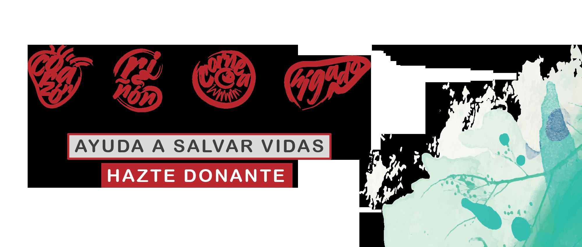 Donación Expresión de Amor: Programa Dos Mujeres al Mando, con la Dra. Manday Perdomo
