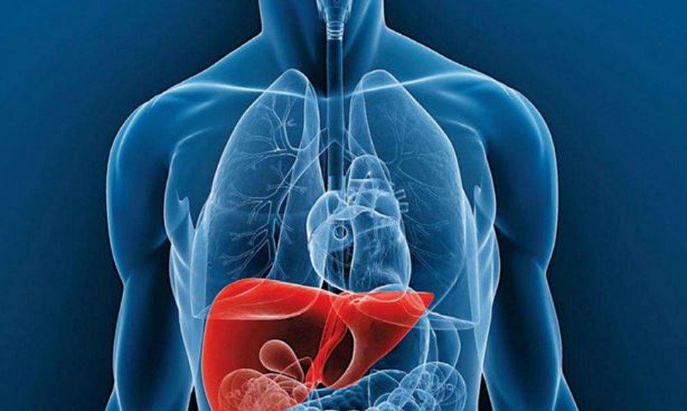 El trasplante de hígado, un procedimiento que puede implementarse