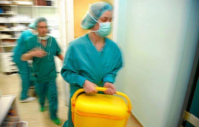 Holanda aprueba la polémica ley que convierte a todos sus ciudadanos en donantes de órganos