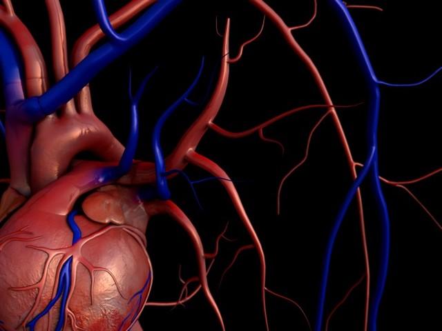 Demuestran que los nuevos tratamientos antivirales permiten el trasplante de corazón de pacientes con hepatitis C