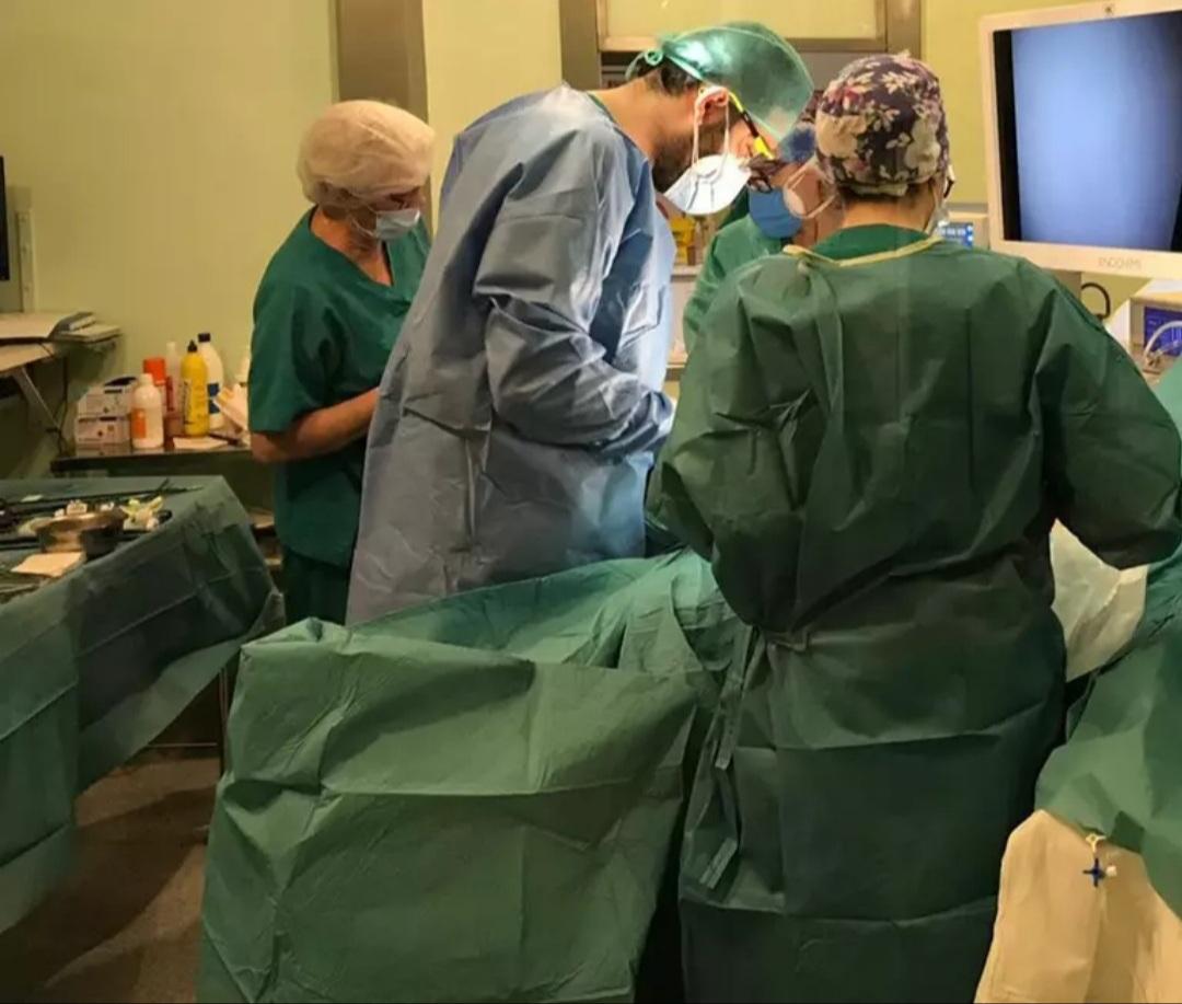 Experto espera que la actividad de trasplante vuelva a final de año a niveles anteriores a la pandemia